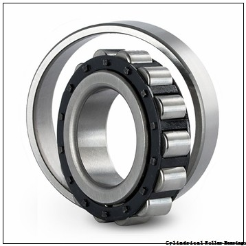 90 mm x 190 mm x 43 mm  NSK N318M C3 Cylindrical Roller Bearings