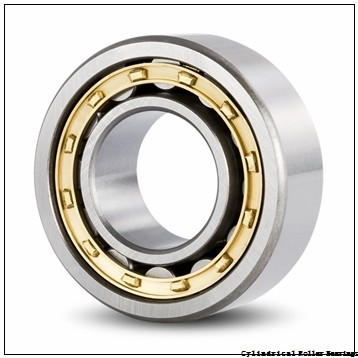 80 mm x 170 mm x 39 mm  NSK N 316 M C3 Cylindrical Roller Bearings