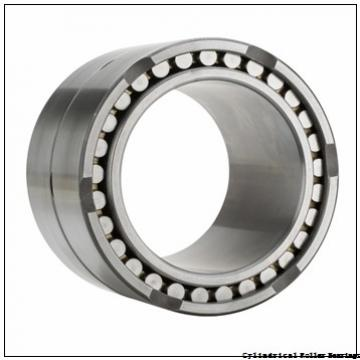 30 mm x 62 mm x 16 mm  NSK N 206 W C3 Cylindrical Roller Bearings
