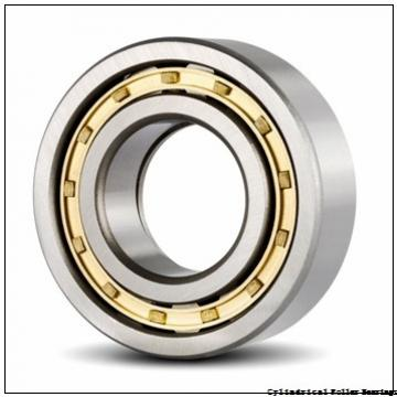 75 mm x 130 mm x 25 mm  NSK NJ 215 W C3 Cylindrical Roller Bearings