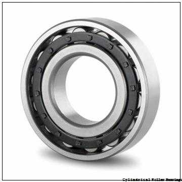 55 mm x 100 mm x 21 mm  NSK N 211 W Cylindrical Roller Bearings