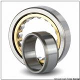 60 mm x 130 mm x 31 mm  NSK NU 312 W Cylindrical Roller Bearings