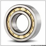 40 mm x 90 mm x 33 mm  NSK NU 2308 W C3 Cylindrical Roller Bearings