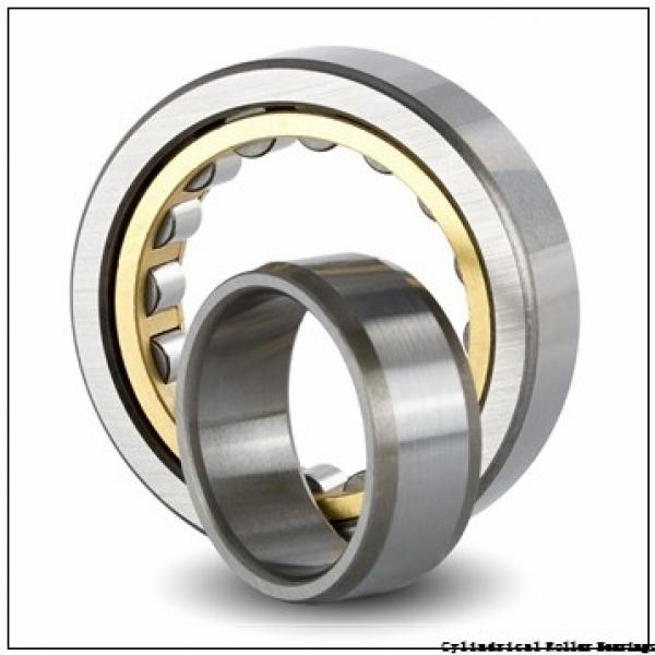 95 mm x 170 mm x 32 mm  NSK NJ 219 M Cylindrical Roller Bearings #2 image