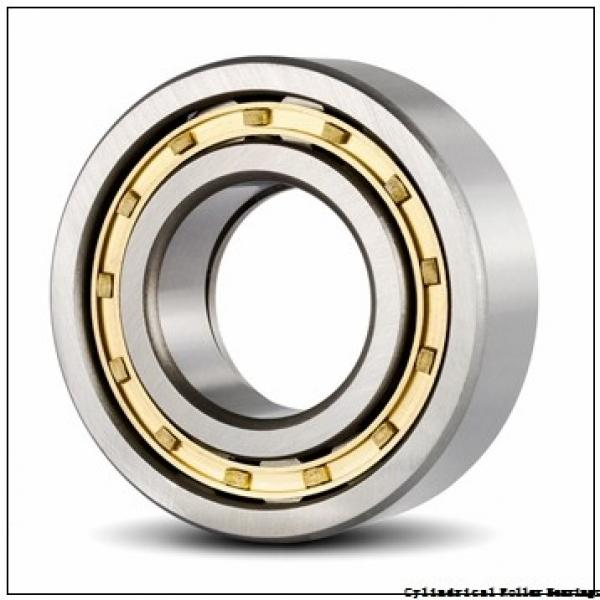 95 mm x 170 mm x 32 mm  NSK NJ 219 M Cylindrical Roller Bearings #1 image